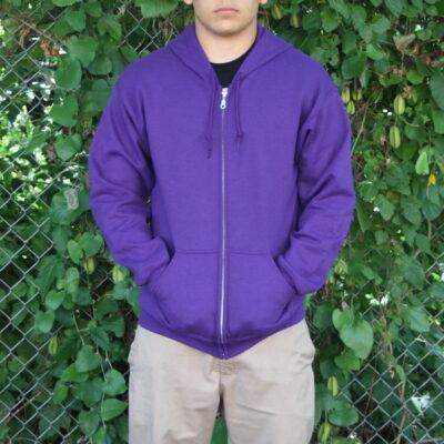 Eagle Reflection Hooded Sweatshirt by Paul Windsor